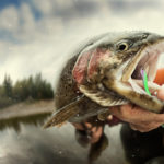 ADVERTISING STRATEGIES FOR FISHING AND HUNTING 2017
