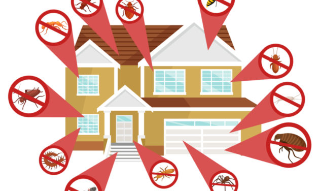 ADVERTISING STRATEGIES FOR EXTERMINATING & PEST CONTROL SERVICES 2018