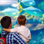ADVERTISING STRATEGIES FOR ZOOS AND AQUARIUMS 2018