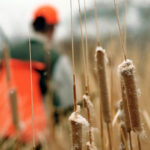 5 THINGS SPORTSMEN NEED TO KNOW ABOUT THE UPCOMING FARM BILL