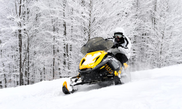 ADVERTISING STRATEGIES FOR SNOWMOBILES MARKET 2018