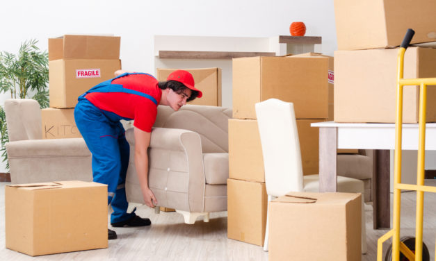 MOVING & STORAGE INDUSTRY 2019