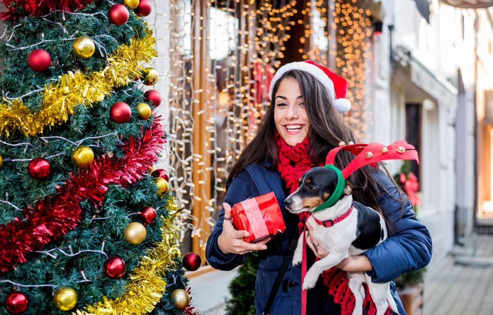 Holiday Shopping Dog Haven