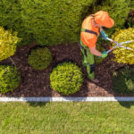 Advertising Strategies for Landscaping Services 2020