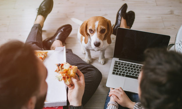 How to Thrive While Working from Home