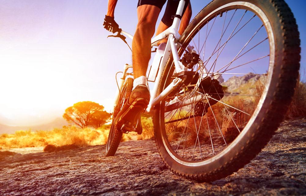 Bicycle Market 2020