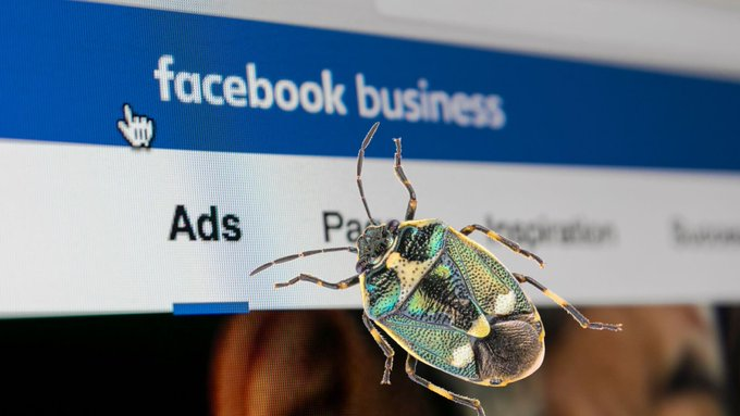 More Facebook Ads Bugs Unnerve Advertisers Ahead of Black Friday, Cyber Monday