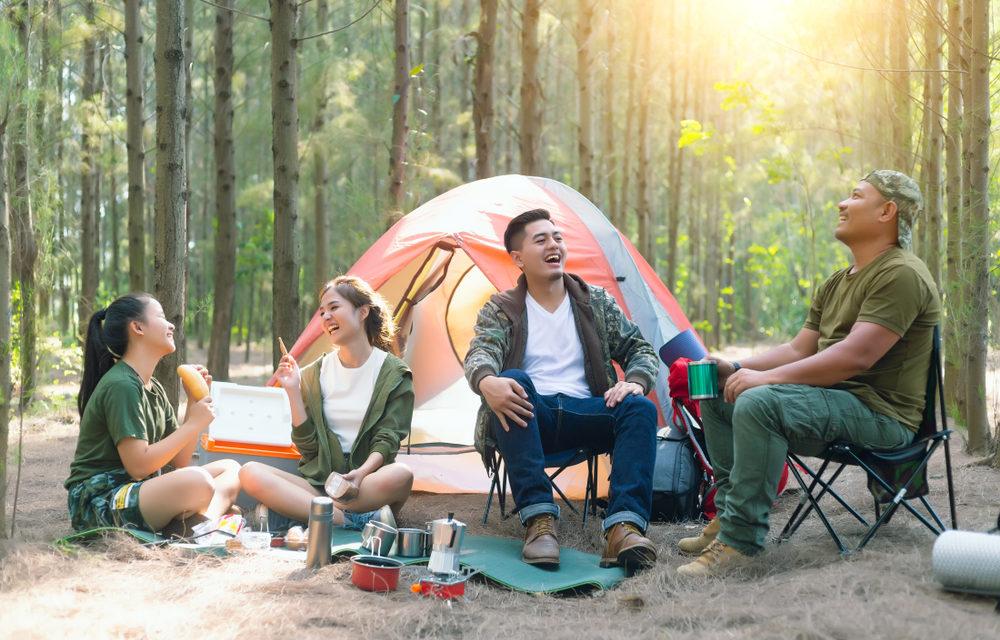 Camping Market 2020
