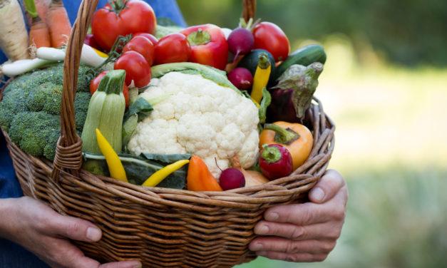 Advertising Strategies for Natural & Organic Food Market 2020