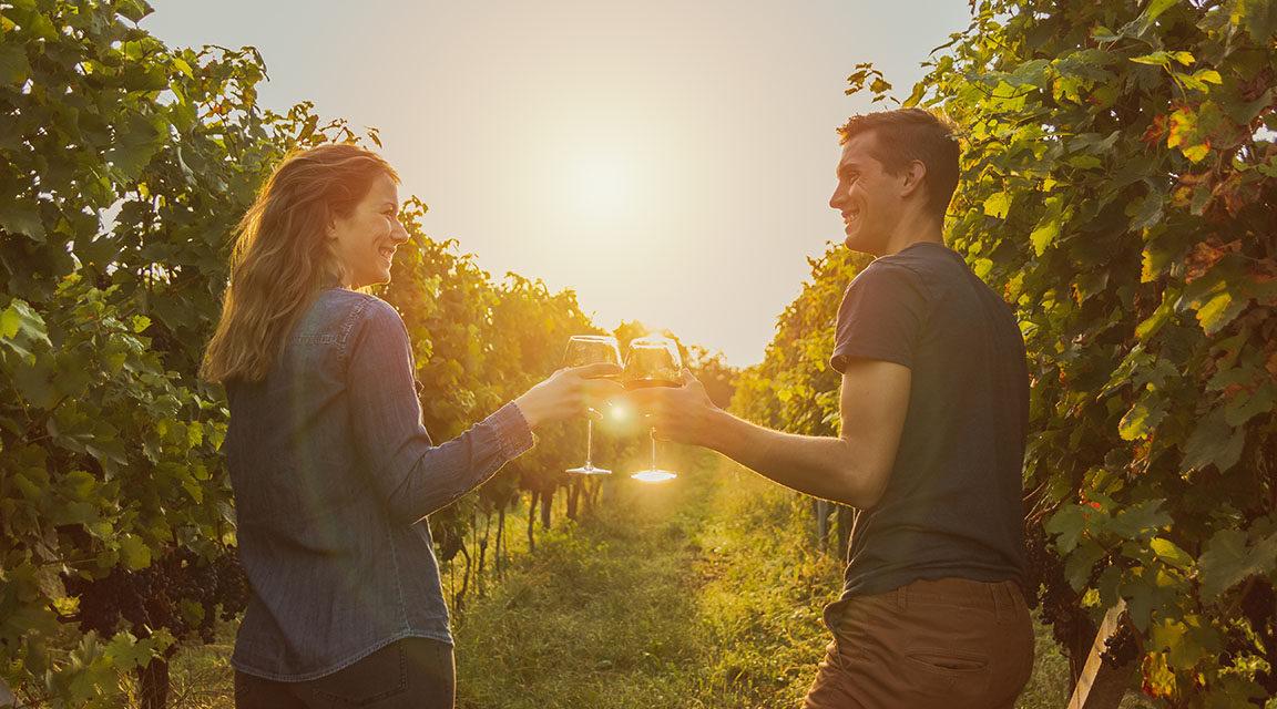 Wine & Spirits Markets 2020