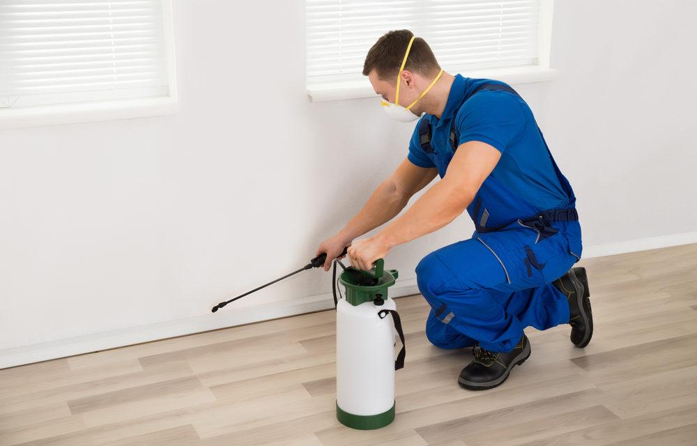 Exterminating & Pest Control Services 2021