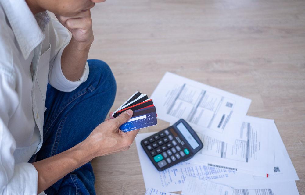 Consumer Credit Industry 2021