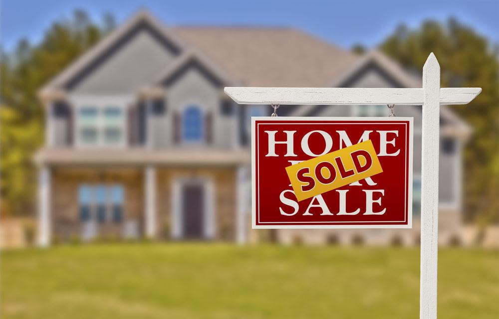 Real Estate Market 2021 PLUS